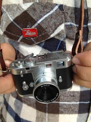 Leicabg